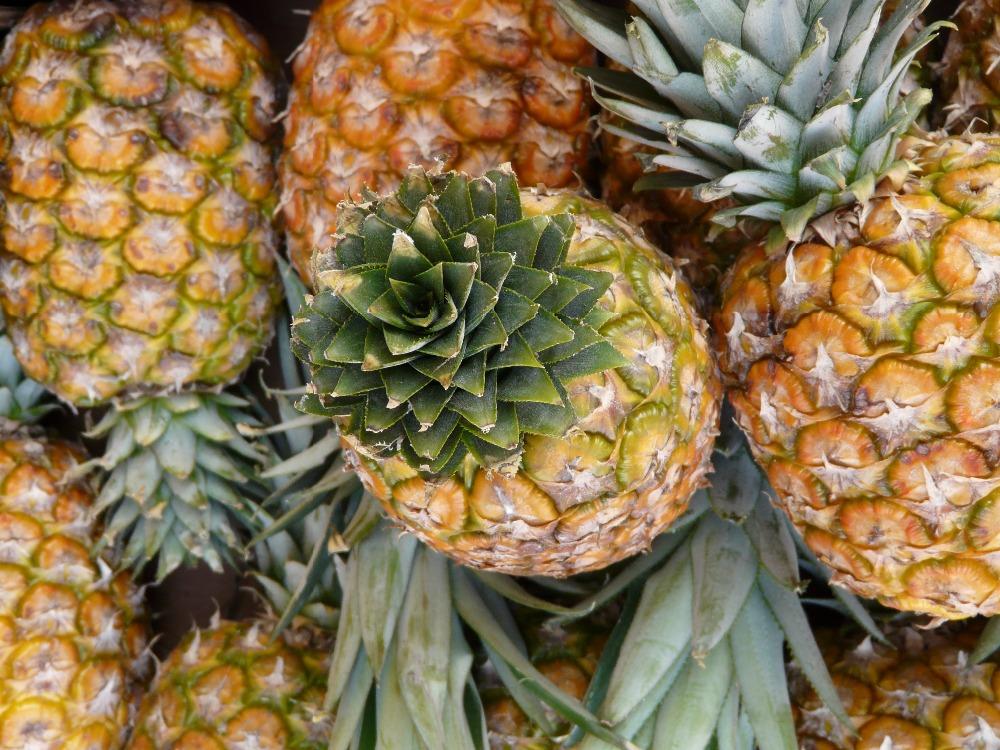 Quality Fresh Pineapples
