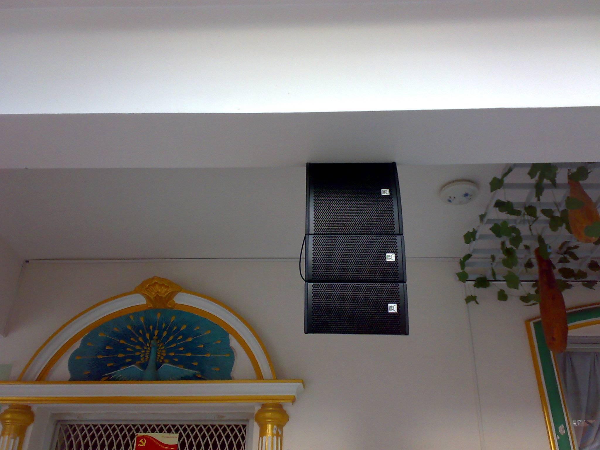 passive mini line array + indoor sound system