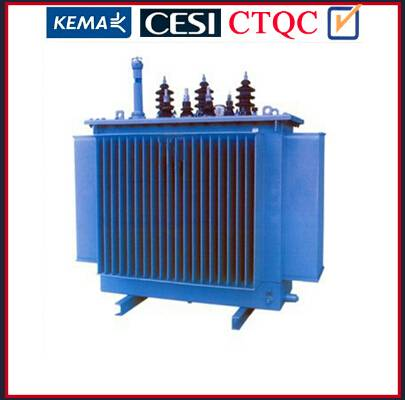 Ground Mounted Hermitrically Sealed 10kv Distribution Transformers