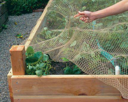 supply anti-bird net, anti-insect net for agriculture
