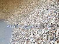 Tapioca Chip for Animal feed