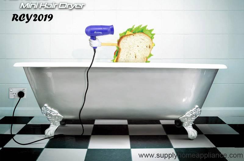 Mini Hair Blow Dryer Price