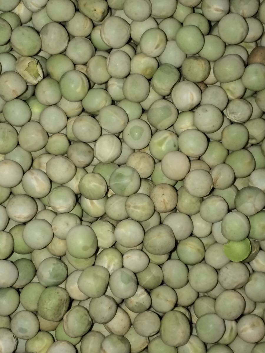 Whole Dry Green Peas