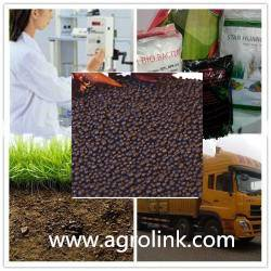 High Quality Plant source Organic Fertilizer 12-3-3 Granule With Humic Acid And Amino Acid