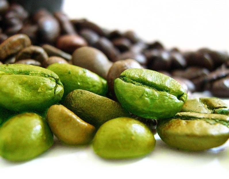Free Sample Green Coffee Powder With Chlorogenic Acids