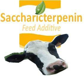 natural feed additive for more quality milk - cattle milking