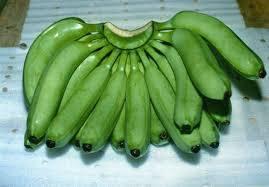 Premuim Cavendish Banana