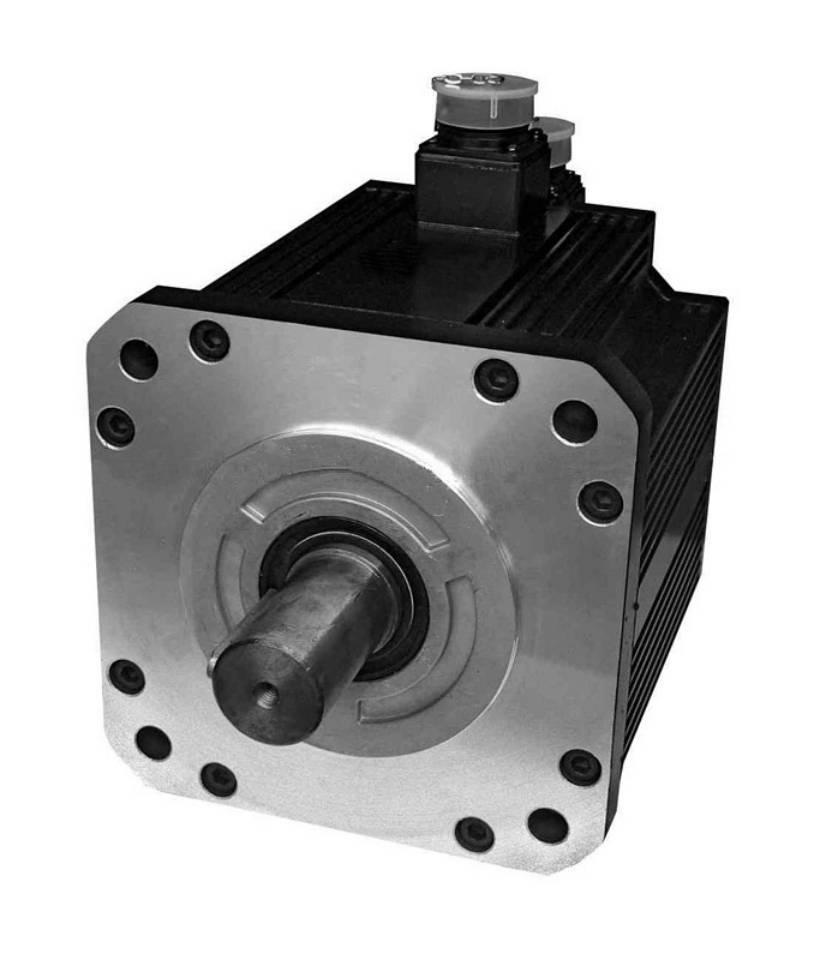 180mm Servo Motor