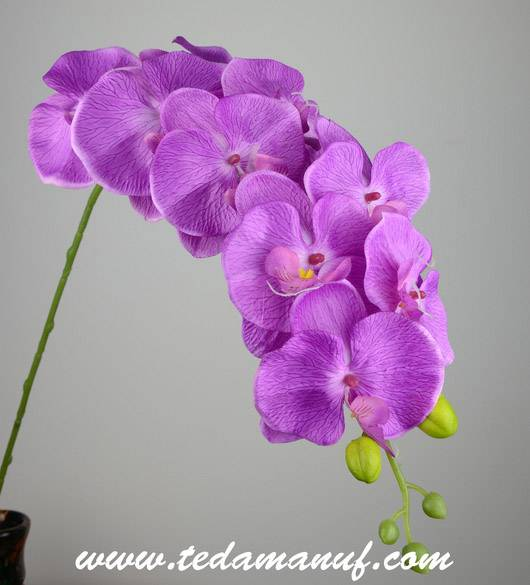 Artificial silk flowers of phalaenopsis orchid