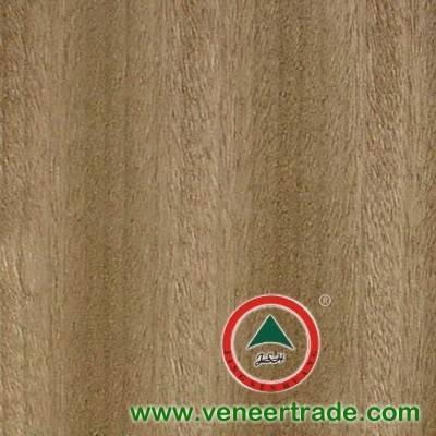 golden teak wood veneer