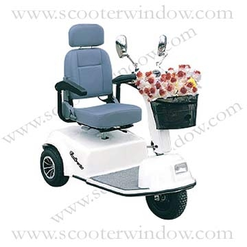 Three-Wheeled Electric Scooter WBE-304