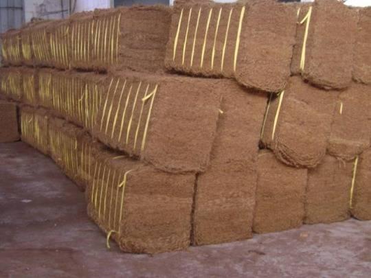 Coconut Fiber/ Coir