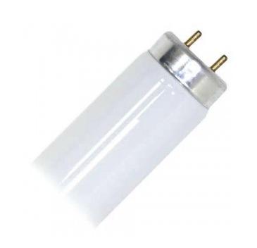 T10 fluorescent tube