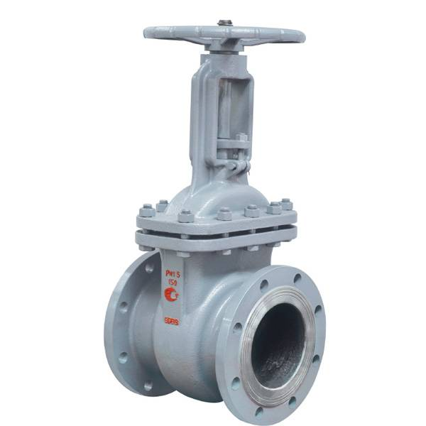 GOST Cast Steel Gate Valve with ISO9001 and Low Price