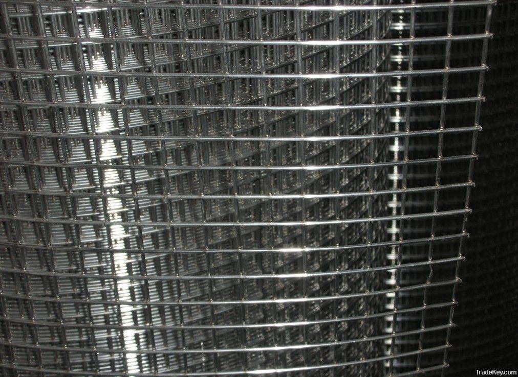 Welded Wire Mesh for Sell