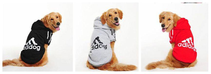 Winter pet clothes, warm dog hoodies