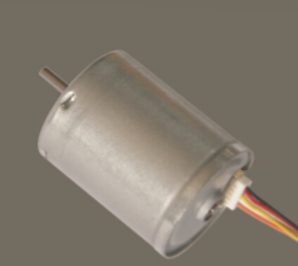 High speed electrical dc motor 25mm gearbox + WBDM2419 Brushless DC Motor