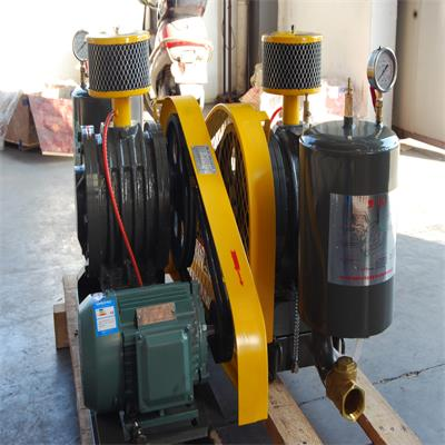 rotary blower for town wastewater aeration
