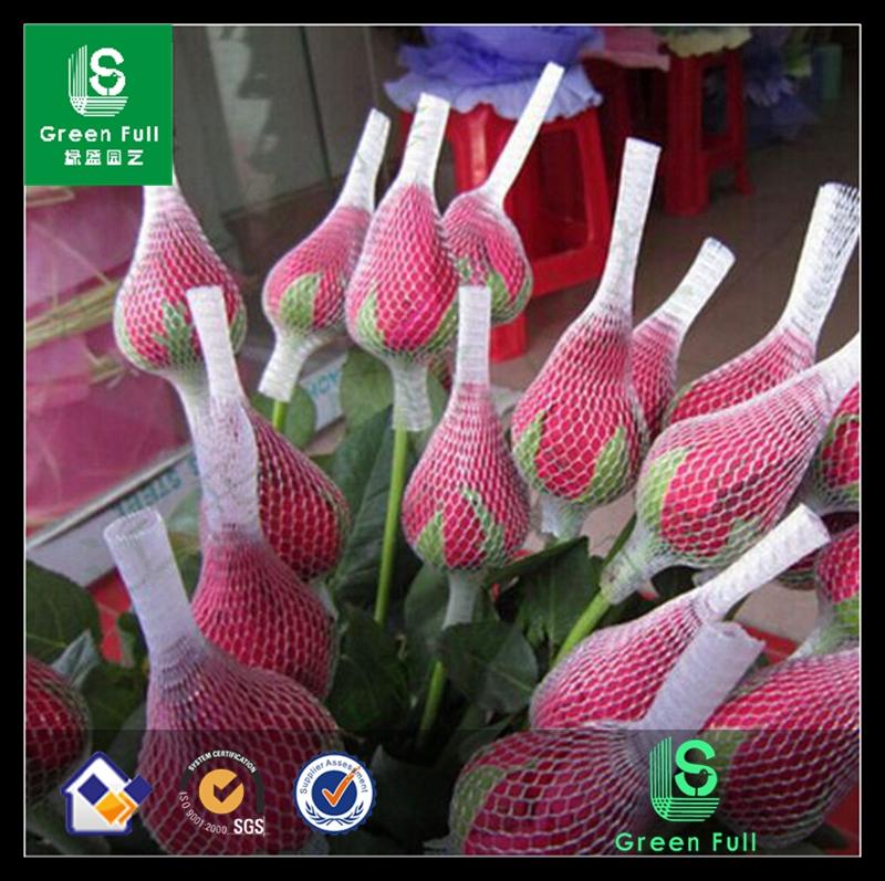 white rose bud net