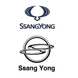 Sell Ssangyong Auto Spare Parts