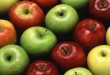 fresh fuji apple,gala apple,golden delicious apple,red delicious apple,green apple