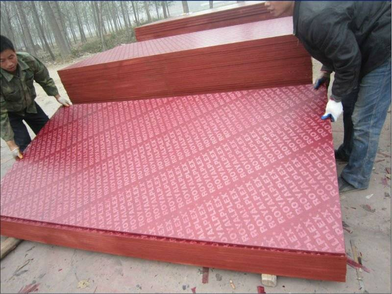 Wholesale Red Film Faced Plywood