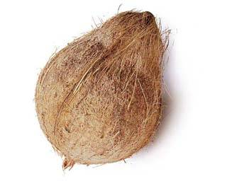 Fresh coconuts to sell