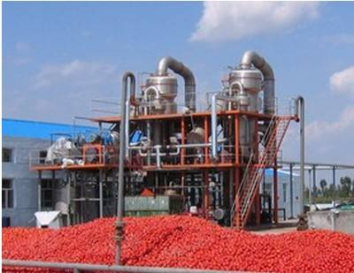 Ketchup (Tomato paste) Production Line
