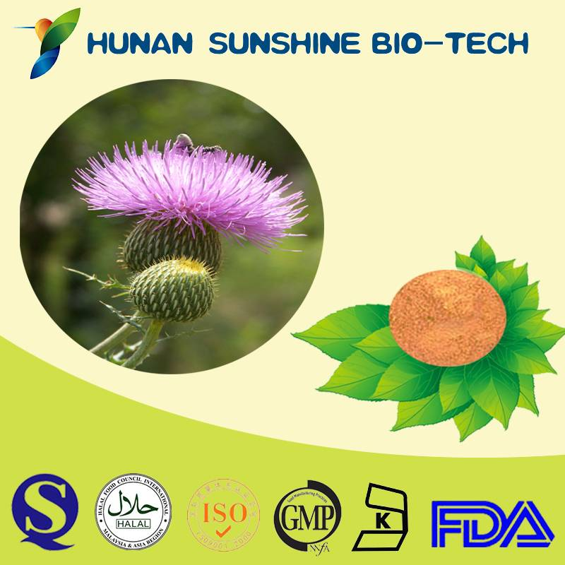 Supply herbal Pure Milk Thistle Extract Powder