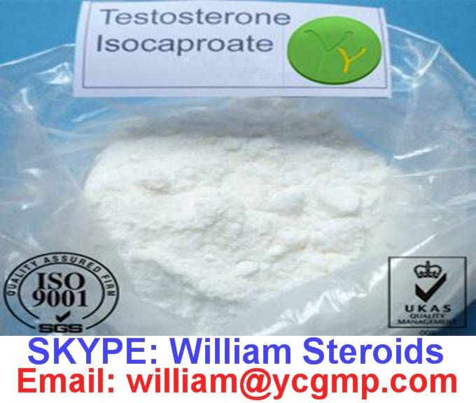 Pharmaceutical Testosterone Isocaproate / Test Iso Raw Powder for Muscle Growth