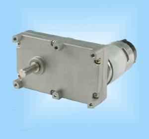 DS119SS775 Gear Reduction Electric Motor