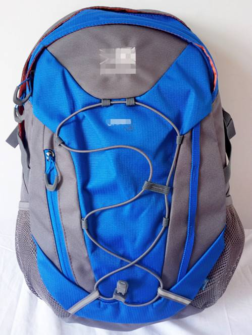 Supply Polyester Backpack