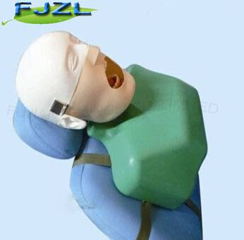 dental simulation manikin phantom head training torso&oral care water cover