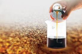 CASHEW SHELL NUT OIL