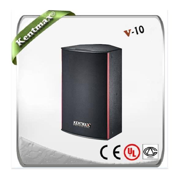 Supply V-10 professional power speaker