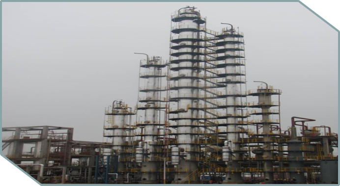 Technology service and provider for chemical process