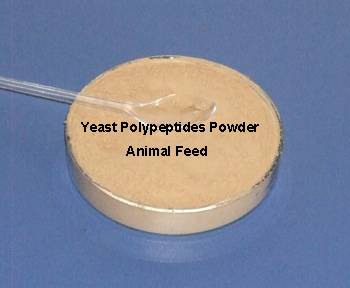Yeast Protein Polypeptides for For Aquatic and Livestock