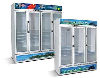 Upright Showcase multiple doors
