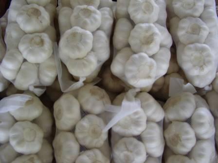 garlic flake granule powder normal white garlic pure white garlic
