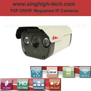 P2p Onvif 2.0MP 1080P Waterproof IR IP Camera (NS6365)