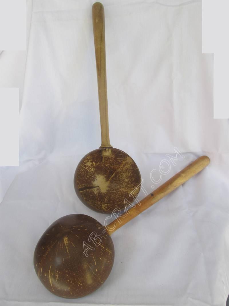 Coconut Shell dipper
