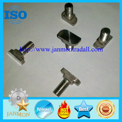 SELL Stainless steel T bolt,T bolt,T bolts,Special T bolt,Special T bolts,Stainless steel bolt