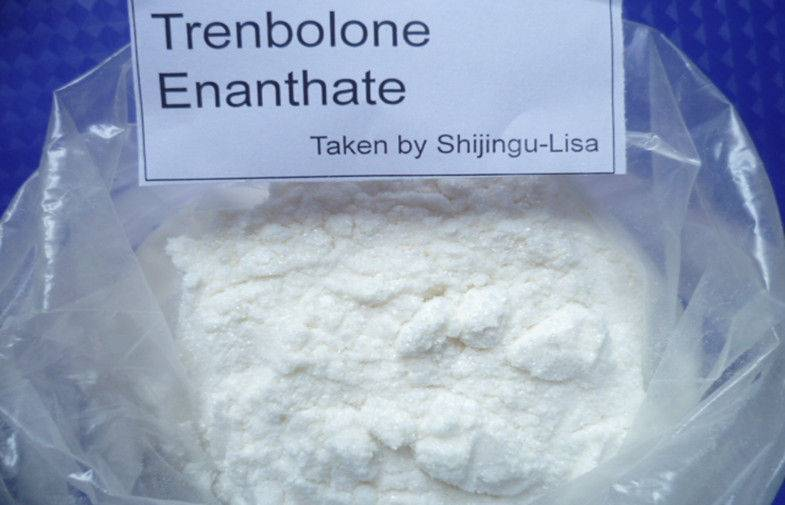 Standard Testosterone Enanthate with Best Price