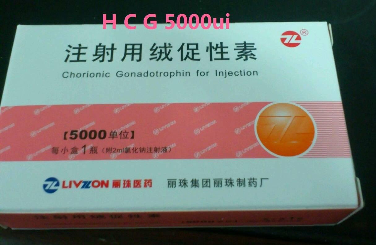 human chorionic gonadotropin HCG with water 5000iu