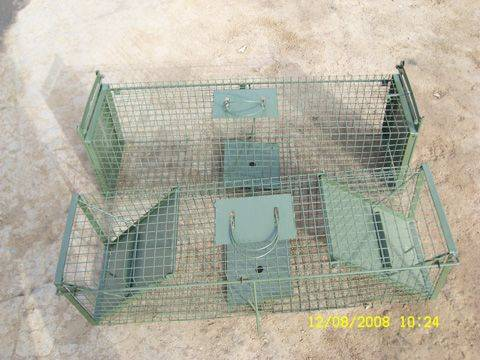 double doors trap cage