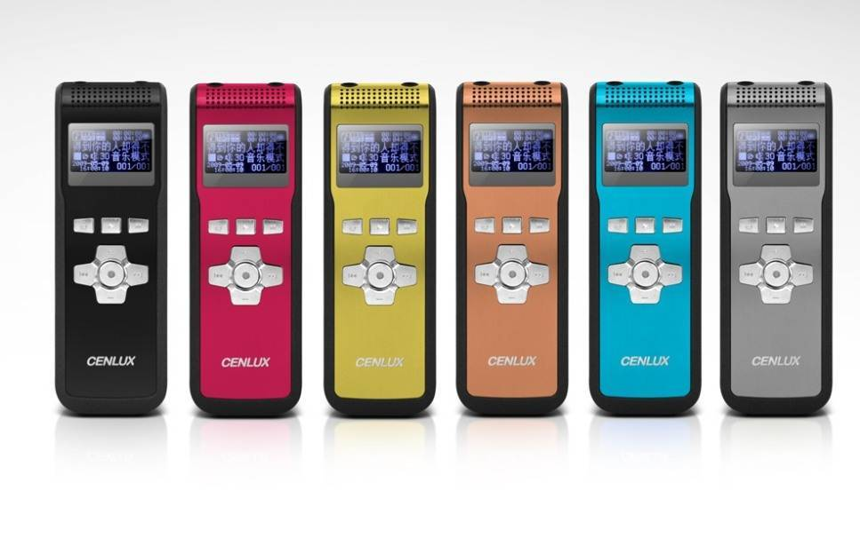 c-80 digital voice recorder