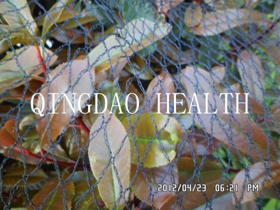 anti-bird net insect netting