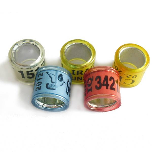 lingleo OEM Hot sale best-quality cheap aluminium color ring for pigeon