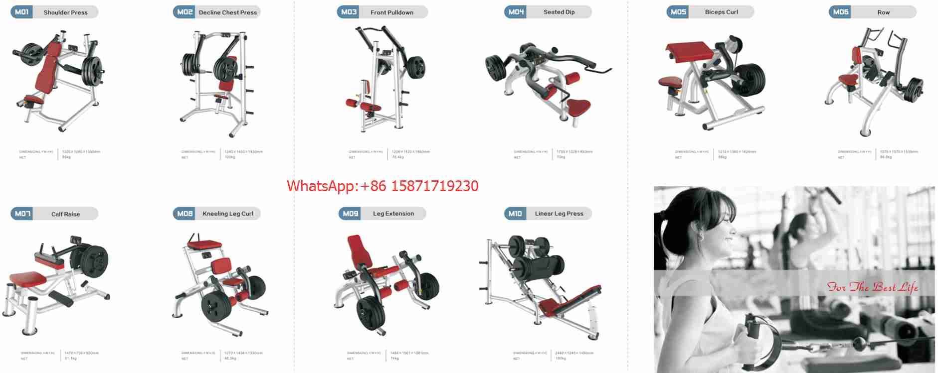 Bailih Ab Crunch Bench P162 Weight Bench Gym Equipment