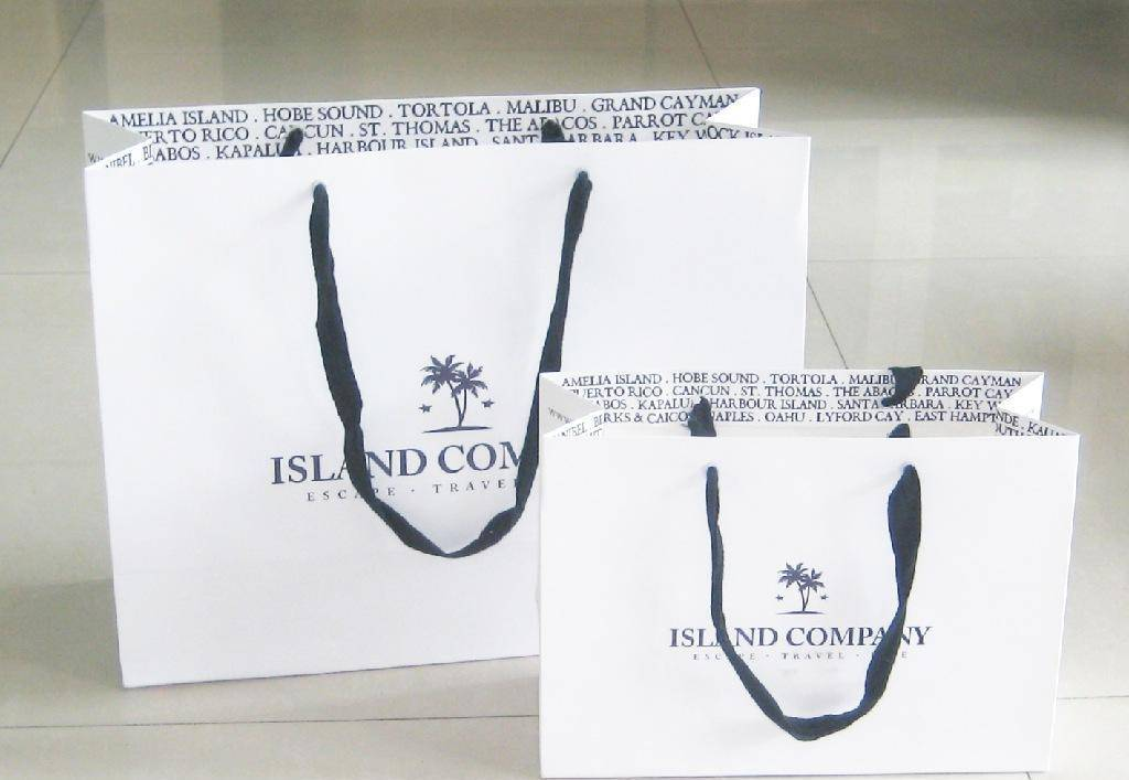 Custom shopping paper bag